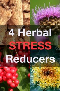 adaptogenic-herbs-stress