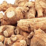 siberian-ginseng-adaptogenic-herb